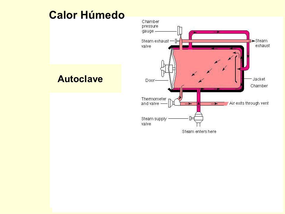 Calor Húmedo Autoclave