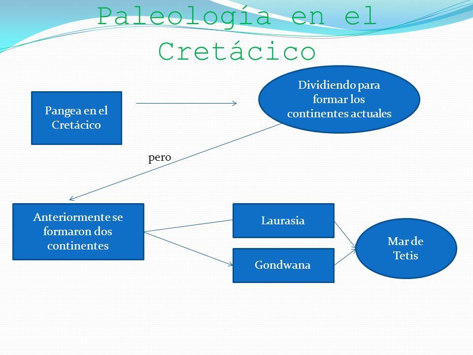 Paleología en el Cretácico