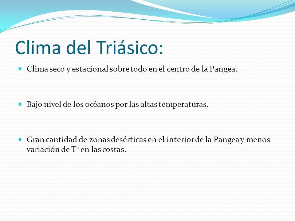 Clima del Triásico: Clima seco y estacional sobre todo en el centro de la Pangea. Bajo nivel de los océanos por las altas temperaturas.