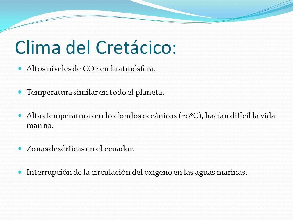 Clima del Cretácico: Altos niveles de CO2 en la atmósfera.