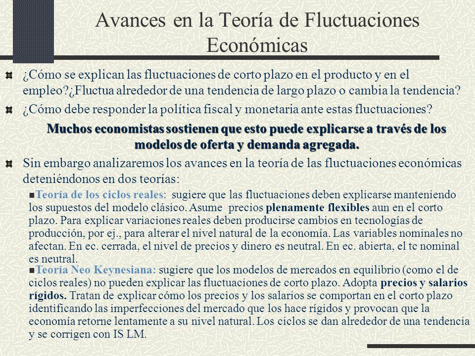 Avances en la Teoría de Fluctuaciones Económicas