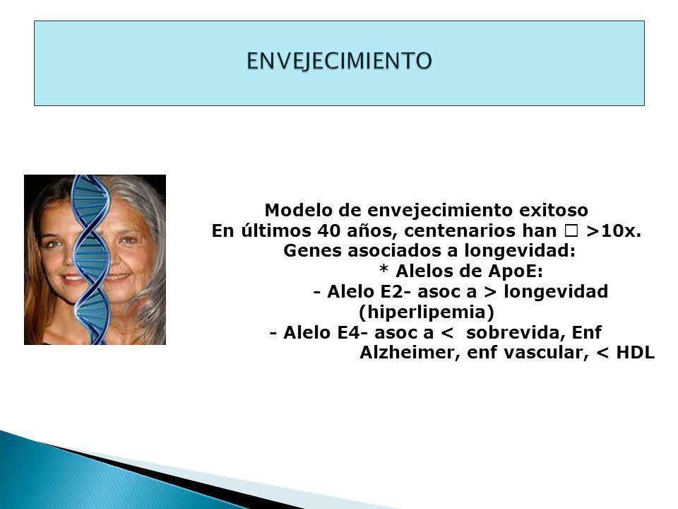 ENVEJECIMIENTO Modelo de envejecimiento exitoso