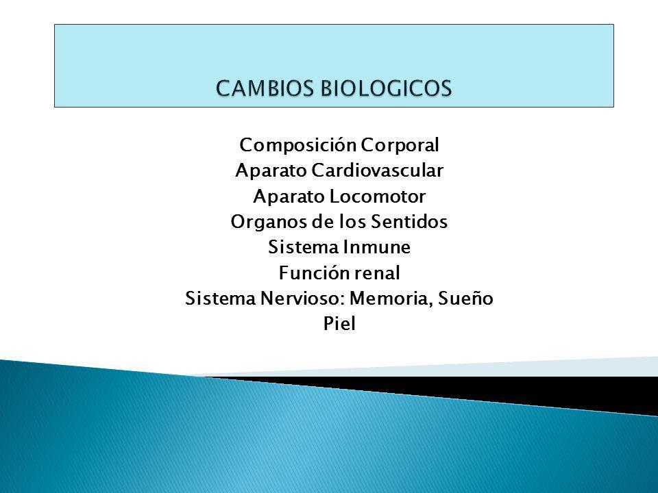 CAMBIOS BIOLOGICOS Composición Corporal Aparato Cardiovascular
