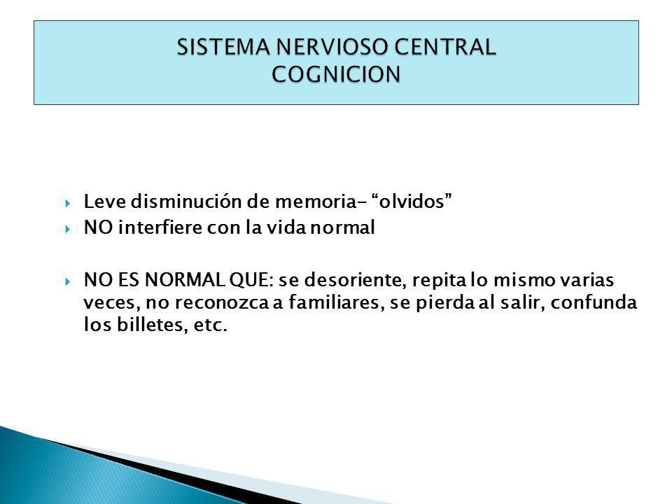 SISTEMA NERVIOSO CENTRAL COGNICION