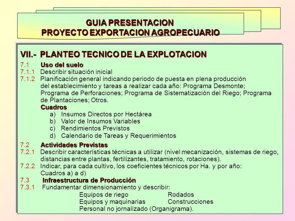 PROYECTO EXPORTACION AGROPECUARIO