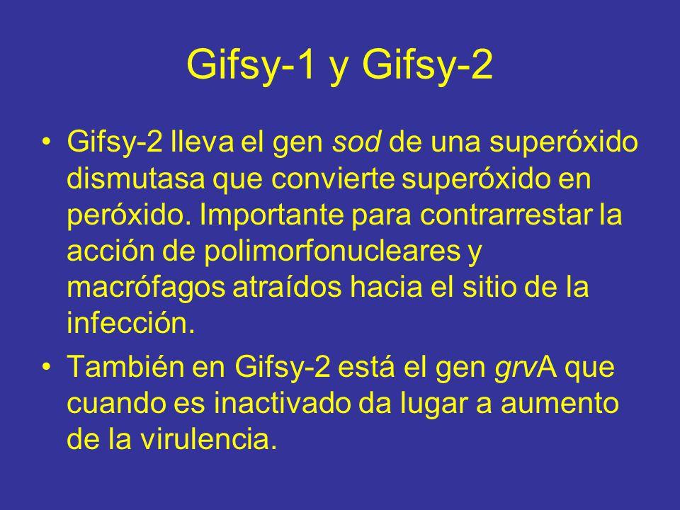 Gifsy-1 y Gifsy-2