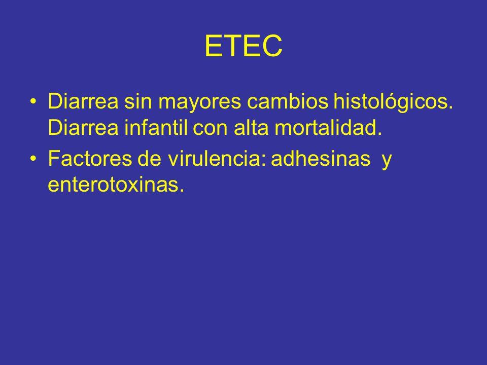 ETEC Diarrea sin mayores cambios histológicos. Diarrea infantil con alta mortalidad.