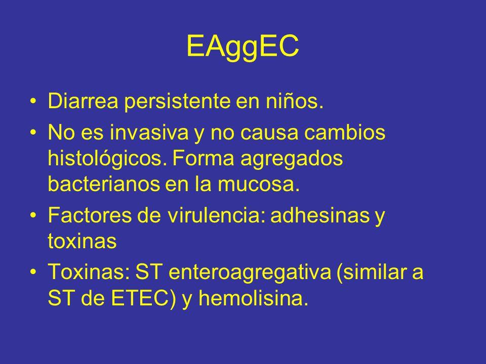 EAggEC Diarrea persistente en niños.