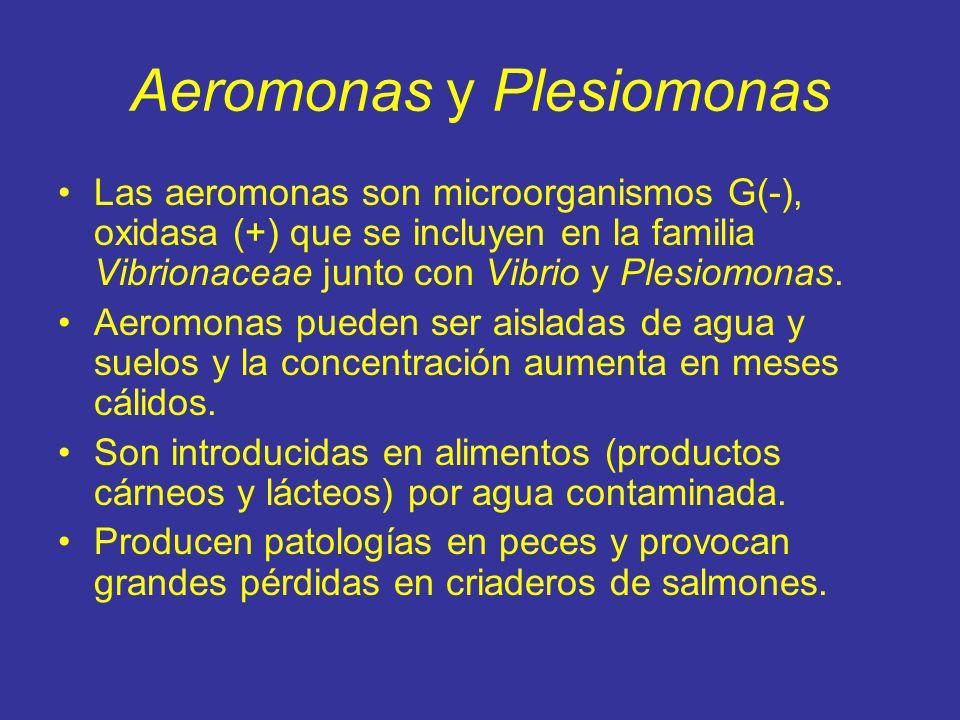 Aeromonas y Plesiomonas