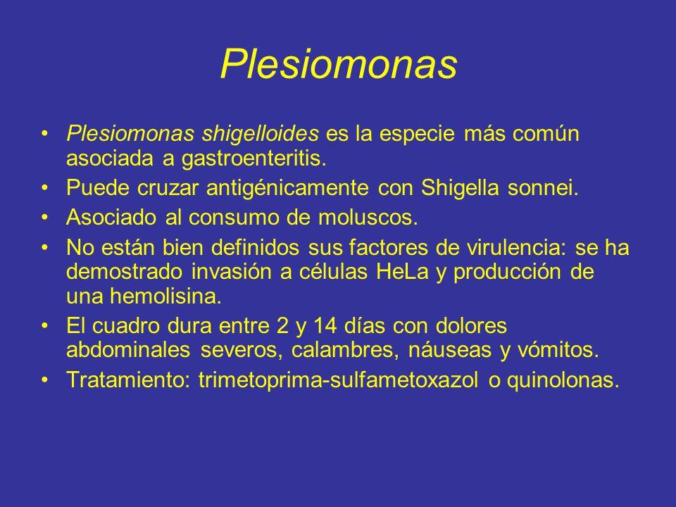 Plesiomonas Plesiomonas shigelloides es la especie más común asociada a gastroenteritis. Puede cruzar antigénicamente con Shigella sonnei.