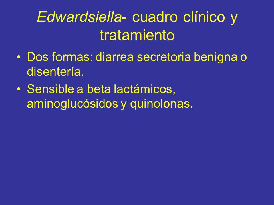 Edwardsiella- cuadro clínico y tratamiento