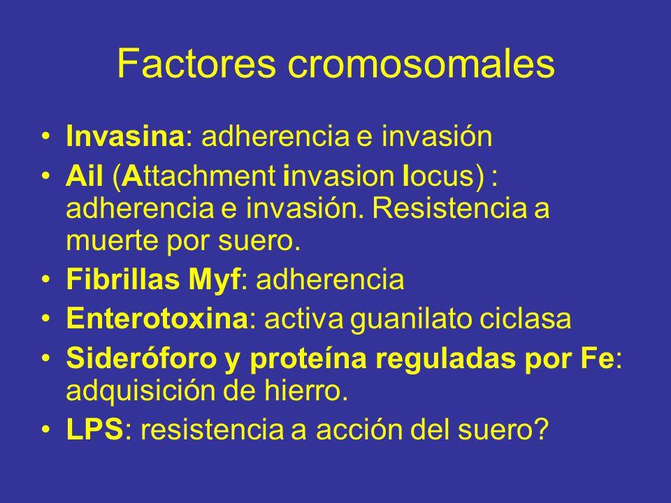 Factores cromosomales
