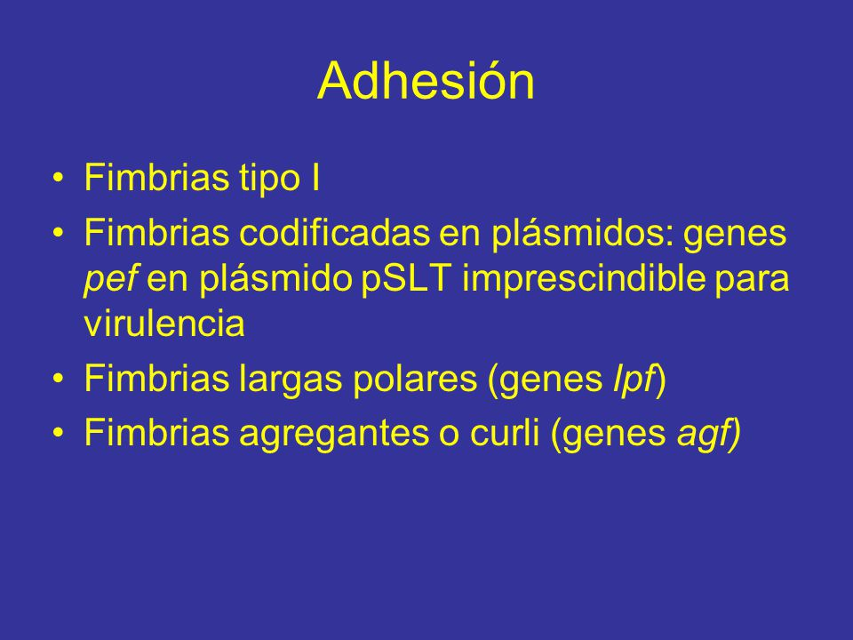 Adhesión Fimbrias tipo I