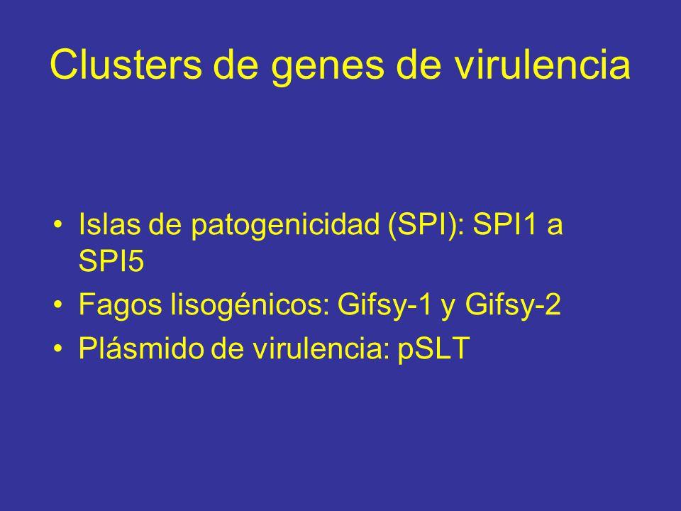 Clusters de genes de virulencia