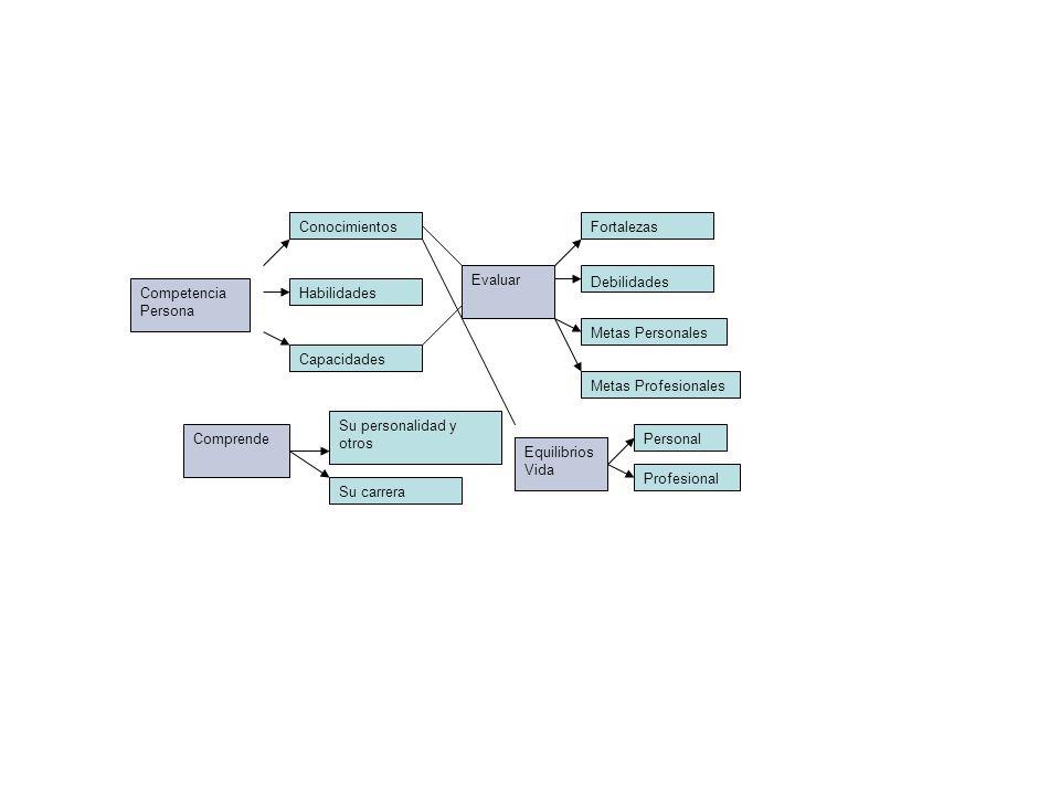 Conocimientos Fortalezas. Evaluar. Debilidades. Competencia Persona. Habilidades. Metas Personales.