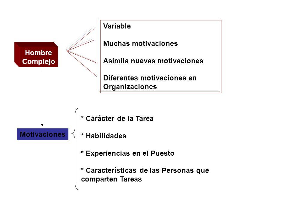 Variable Muchas motivaciones. Asimila nuevas motivaciones. Diferentes motivaciones en Organizaciones.