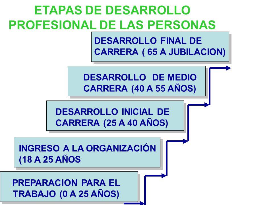 ETAPAS DE DESARROLLO PROFESIONAL DE LAS PERSONAS