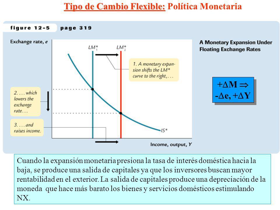 Tipo de Cambio Flexible: Política Monetaria