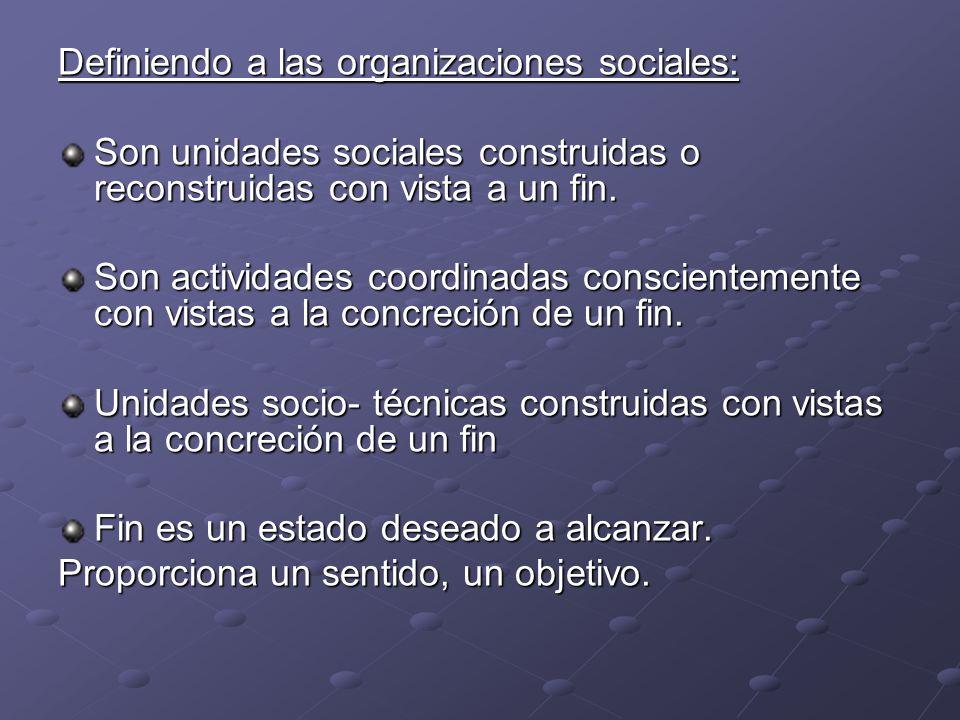 Definiendo a las organizaciones sociales: