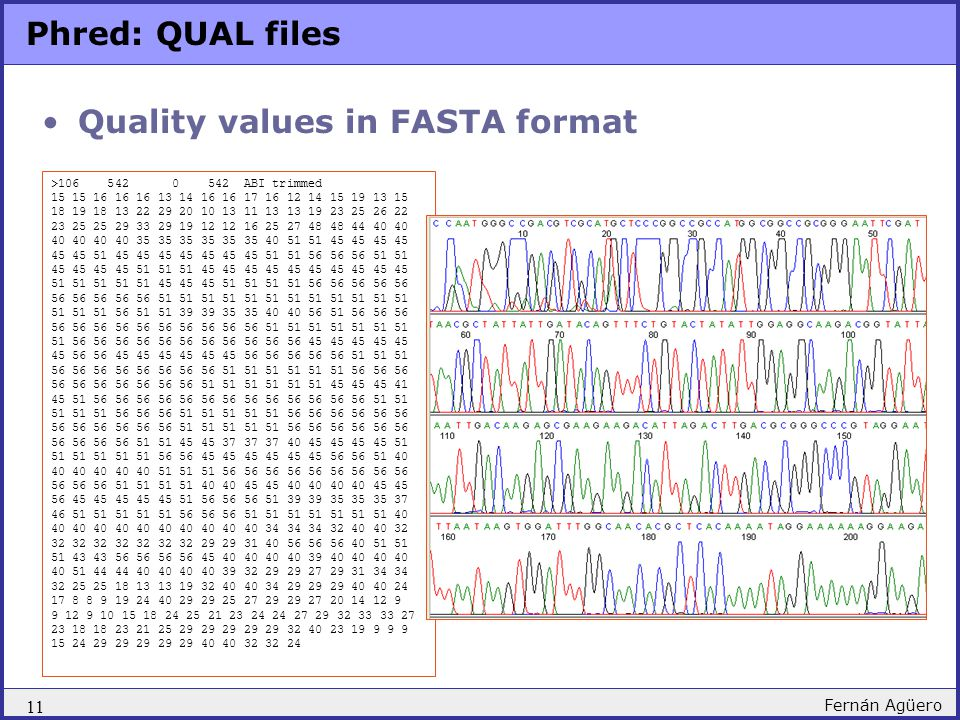 Quality values in FASTA format