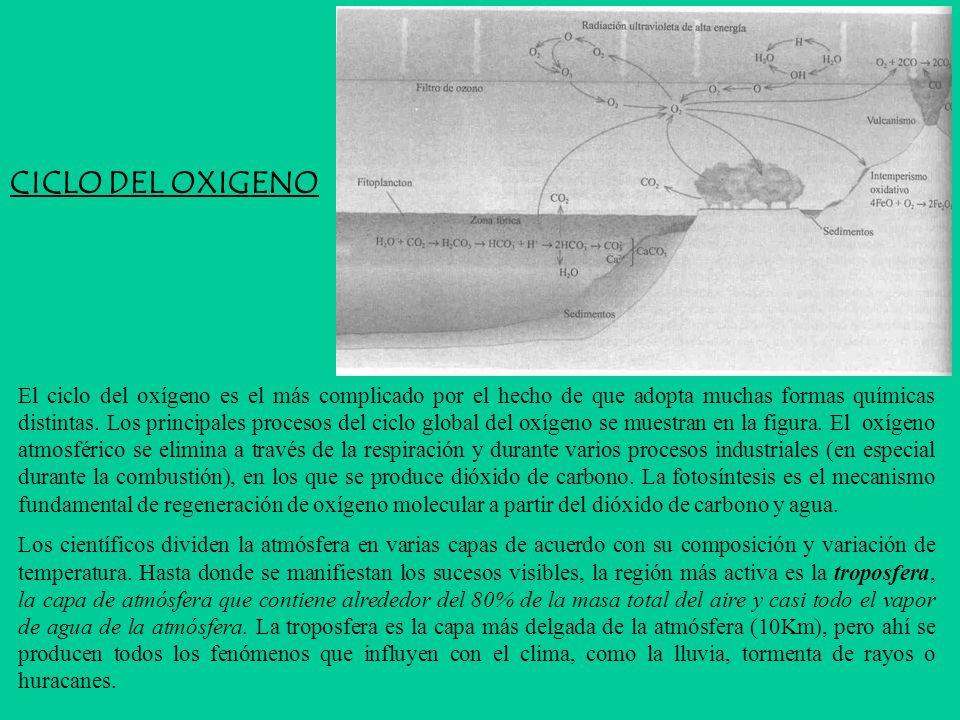 CICLO DEL OXIGENO