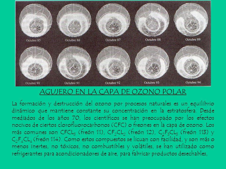 AGUJERO EN LA CAPA DE OZONO POLAR