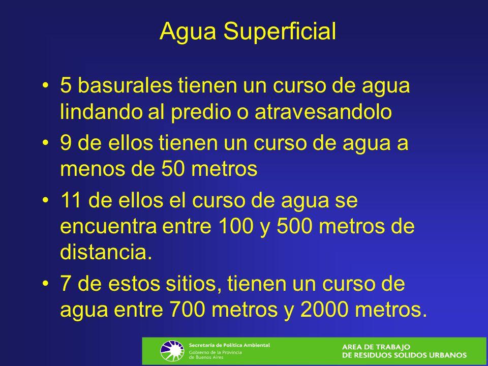 Agua Superficial 5 basurales tienen un curso de agua lindando al predio o atravesandolo. 9 de ellos tienen un curso de agua a menos de 50 metros.