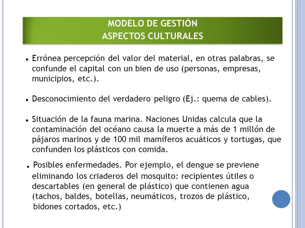MODELO DE GESTIÓN ASPECTOS CULTURALES.