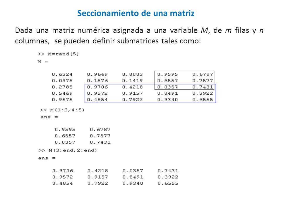 Seccionamiento de una matriz