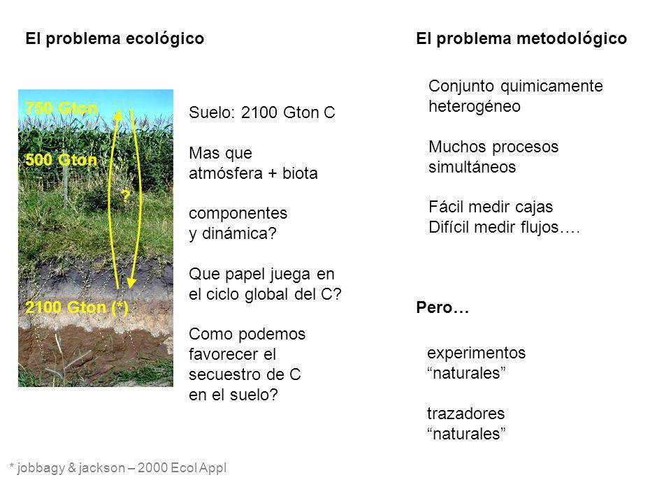 El problema metodológico
