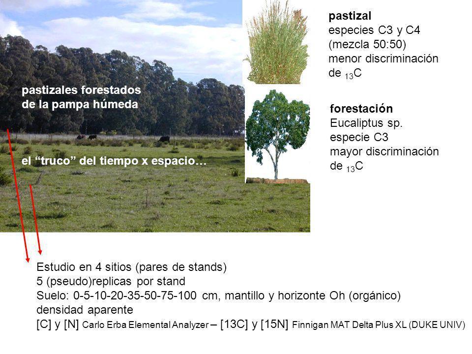pastizal especies C3 y C4. (mezcla 50:50) menor discriminación. de 13C. forestación. Eucaliptus sp.