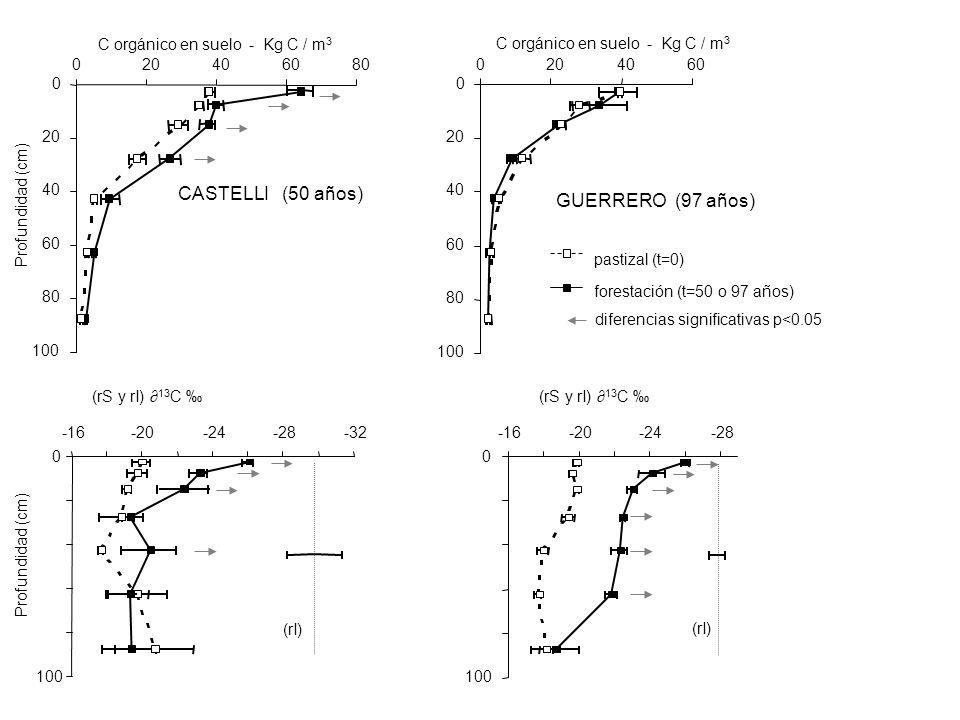 CASTELLI (50 años) GUERRERO (97 años) C orgánico en suelo - Kg C / m3