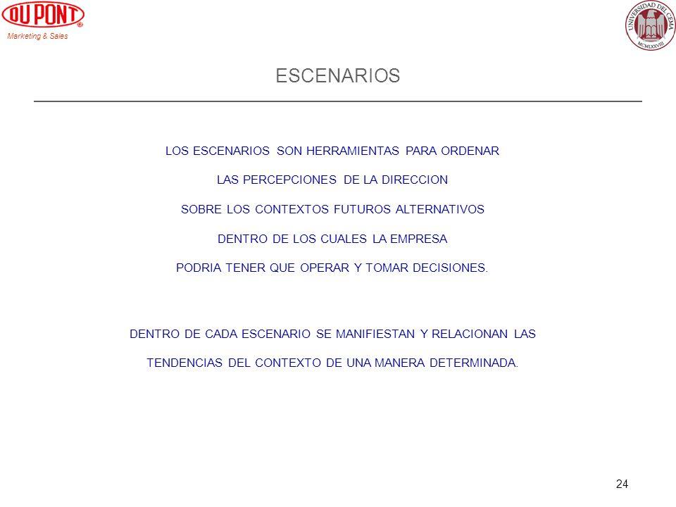 ESCENARIOS LOS ESCENARIOS SON HERRAMIENTAS PARA ORDENAR