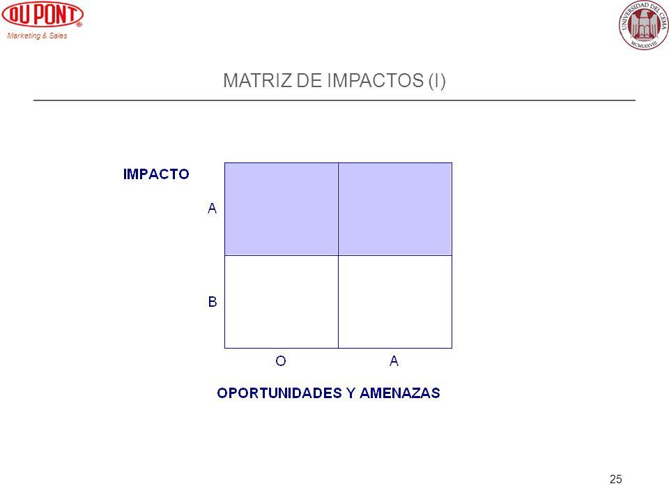MATRIZ DE IMPACTOS (I)