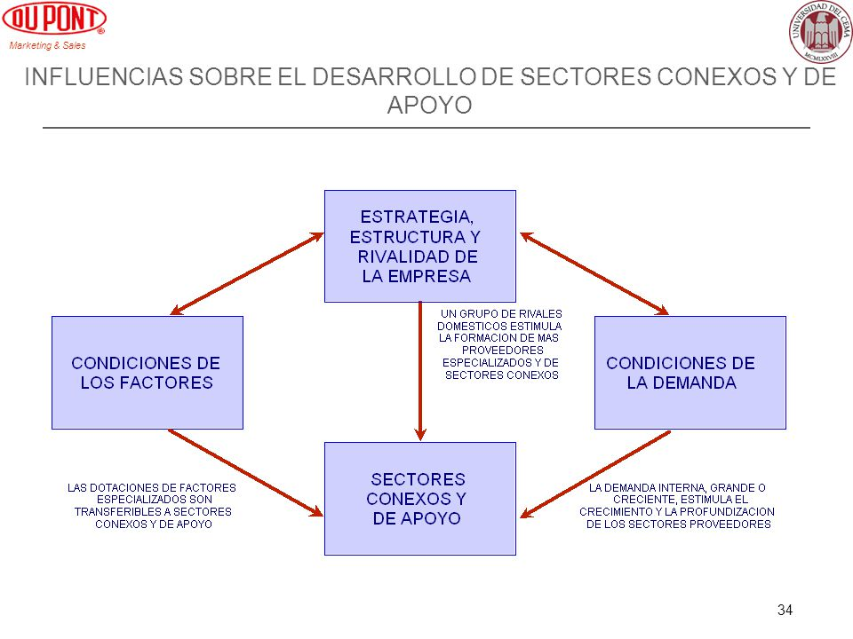 INFLUENCIAS SOBRE EL DESARROLLO DE SECTORES CONEXOS Y DE APOYO