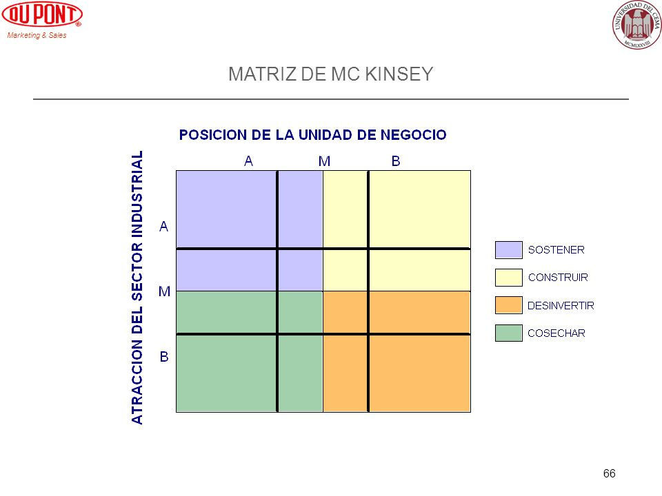 MATRIZ DE MC KINSEY