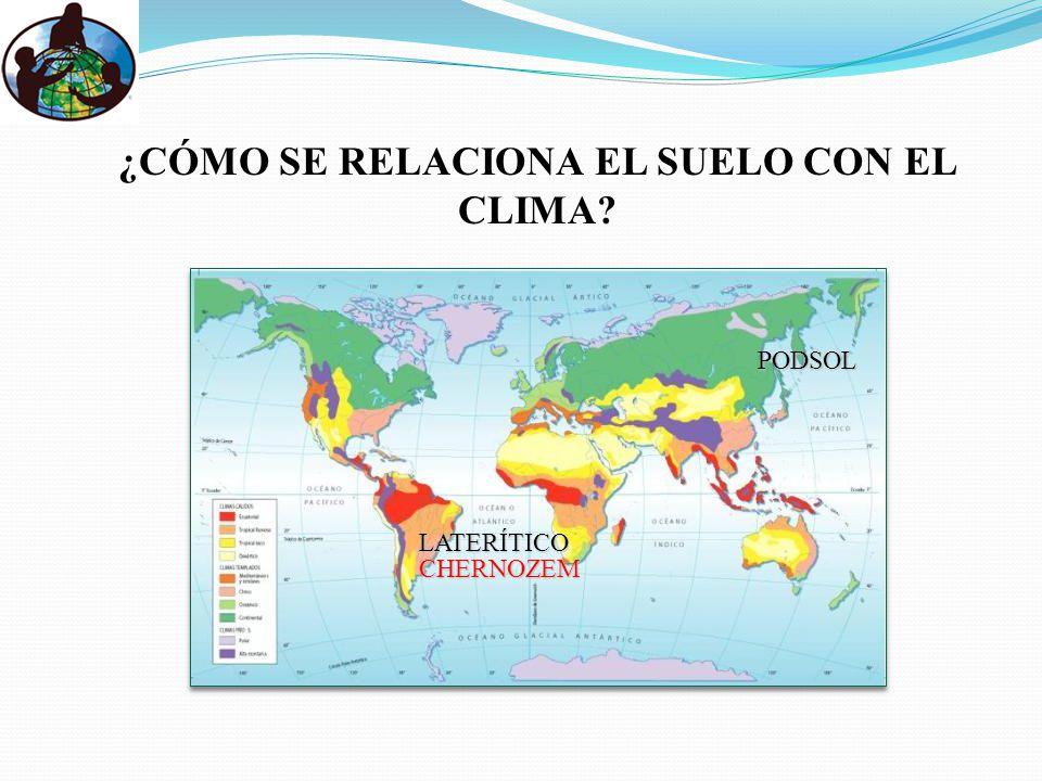 ¿CÓMO SE RELACIONA EL SUELO CON EL CLIMA