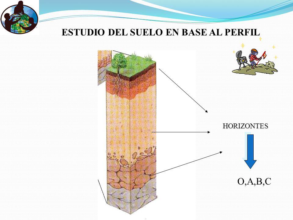 ESTUDIO DEL SUELO EN BASE AL PERFIL