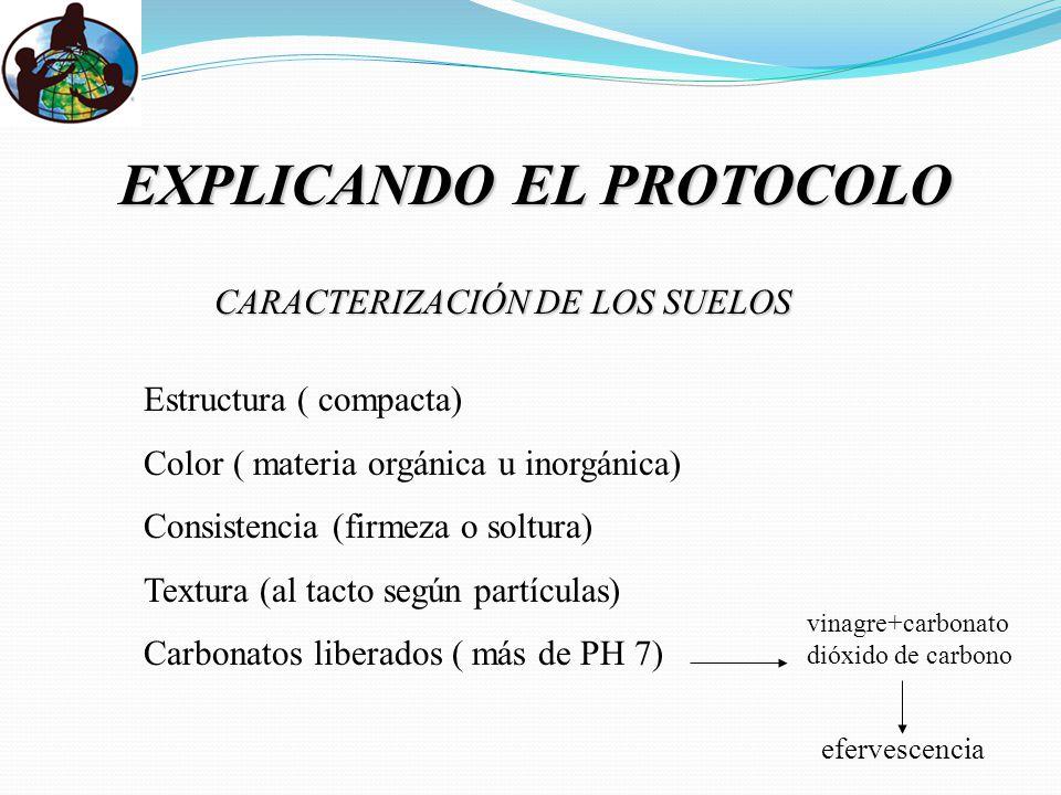 EXPLICANDO EL PROTOCOLO
