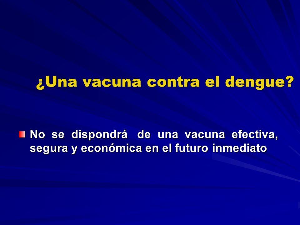 ¿Una vacuna contra el dengue