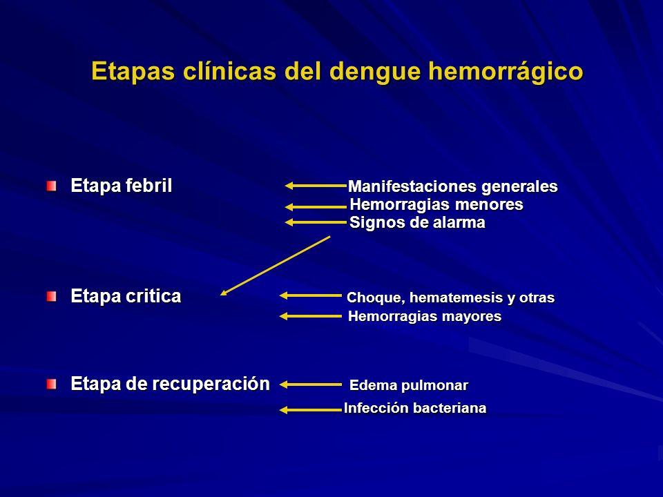 Etapas clínicas del dengue hemorrágico