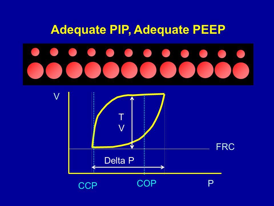 Adequate PIP, Adequate PEEP