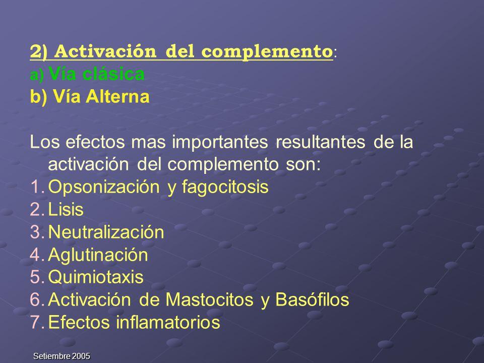 2) Activación del complemento: b) Vía Alterna
