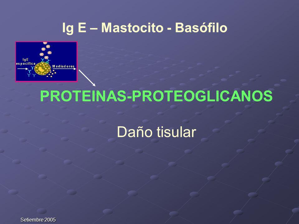 Ig E – Mastocito - Basófilo PROTEINAS-PROTEOGLICANOS