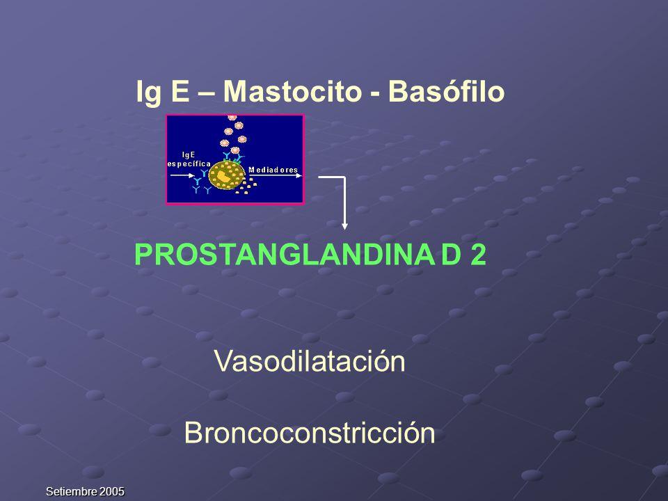 Ig E – Mastocito - Basófilo