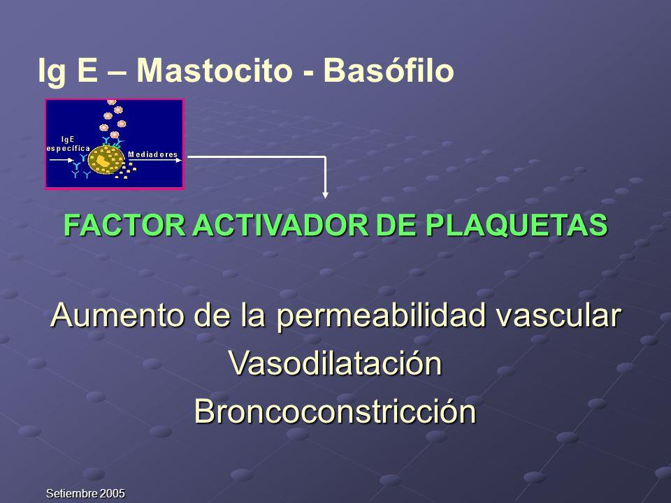 Ig E – Mastocito - Basófilo FACTOR ACTIVADOR DE PLAQUETAS