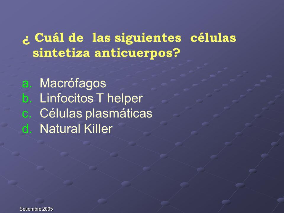 ¿ Cuál de las siguientes células sintetiza anticuerpos