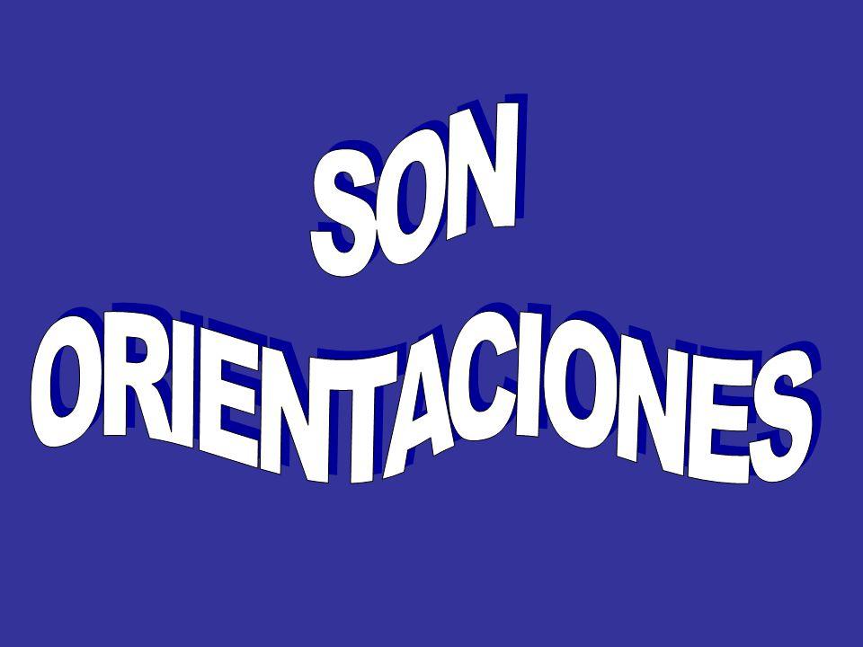 SON ORIENTACIONES