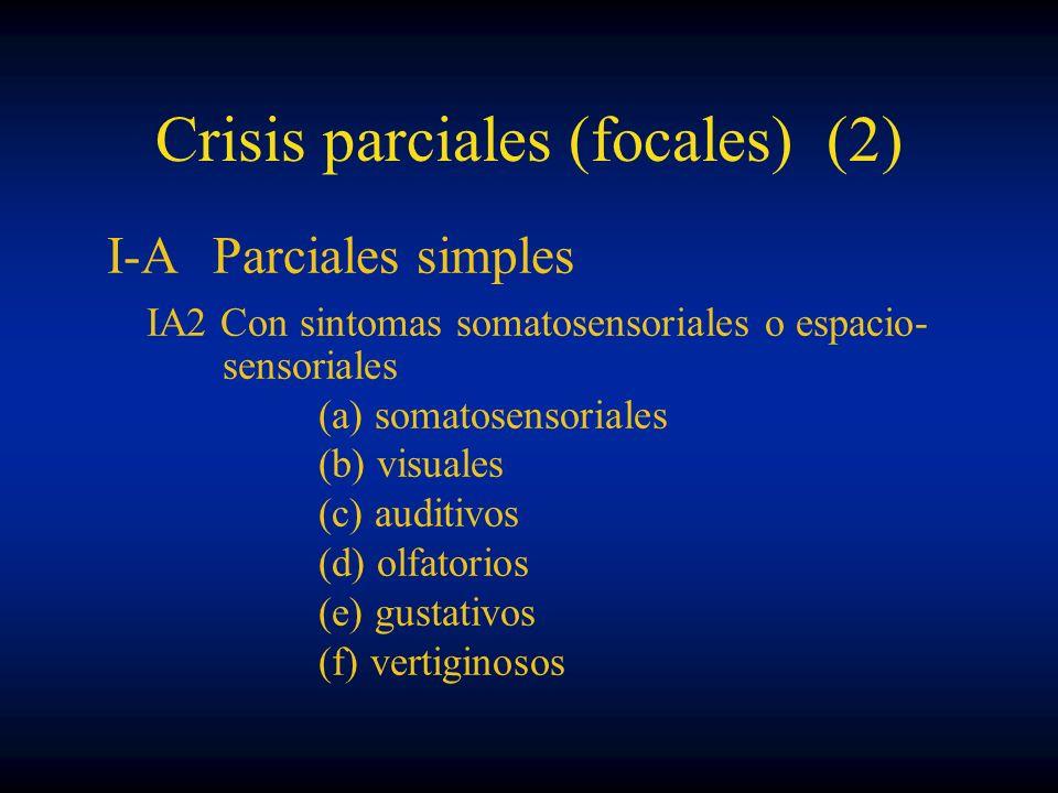 Crisis parciales (focales) (2)