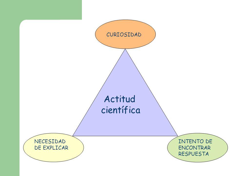 Actitud científica NECESIDAD DE EXPLICAR CURIOSIDAD